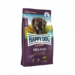 Happy Dog Sensible Irland